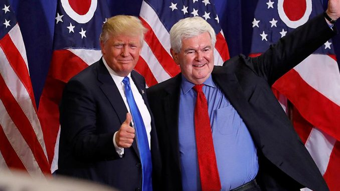 Newt Gingrich Wants To Be Trump's 'Senior Planner'