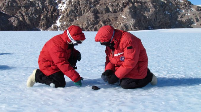 Russian scientists discover new life form in Antarctica