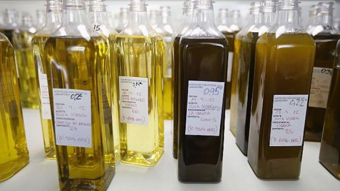 More than two-thirds of common brands of extra-virgin olive oil found in American grocery stores aren't what they claim to be, according to a University of California at Davis study.