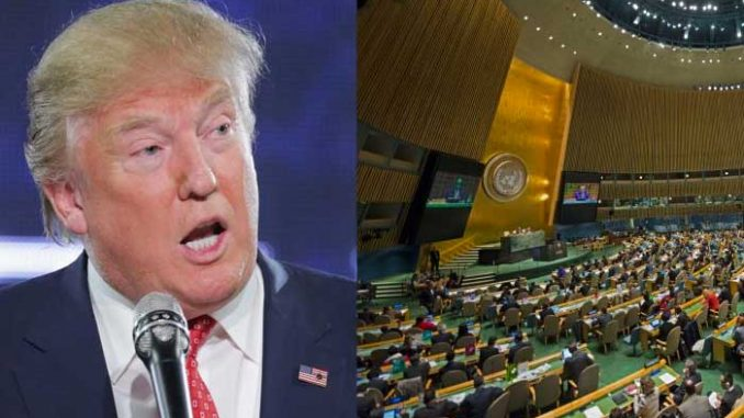 Days after Trump's inauguration, members of Congress are seizing the moment and pushing for America to exit the United Nations.