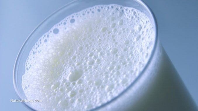 Dairy industry pump milk with cancer-causing chemicals