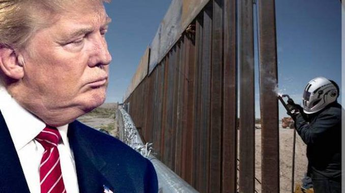The Trump administration has opened the bidding for private companies to construct the border wall between the US and Mexico.