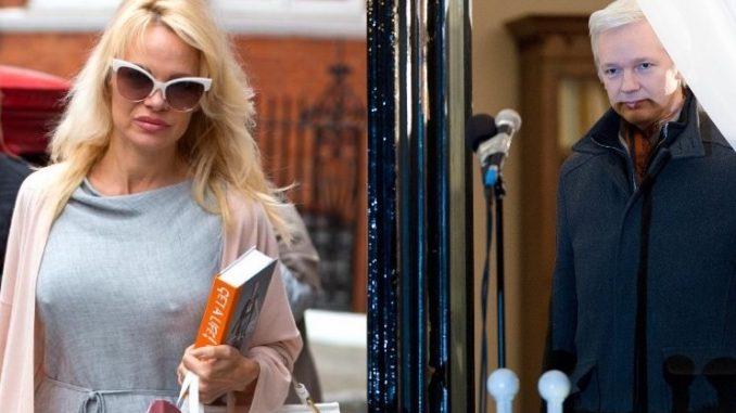 Rumors are swirling that former Baywatch star Pamela Anderson may be a secret Russian agent trying to bring down Julian Assange by becoming his girlfriend.