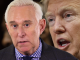 Roger Stone Jr. survives assassination attempt in his car