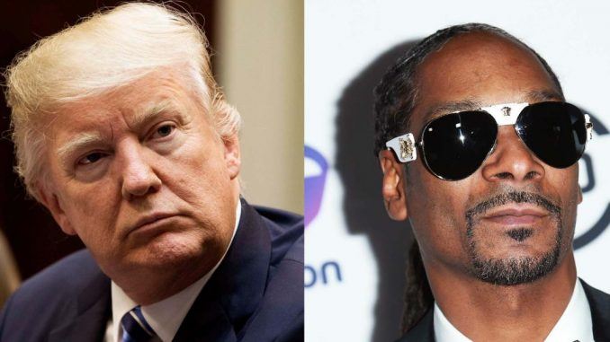 President Trump has weighed in on Snoop Dogg's sad new video in which the has-been rapper points a toy gun at a clown version of the president.