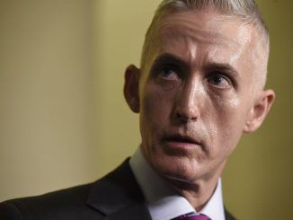 Two investigators working for the Congressional committee headed by Trey Gowdy have gone missing in the Little Rock, Arkansas area.