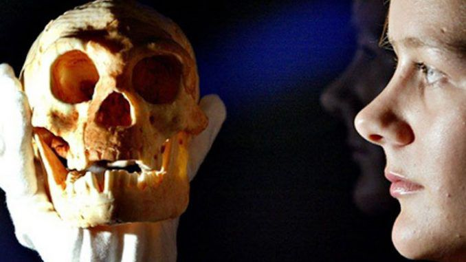 Indonesia hobbits are not related to humans, scientists confirm