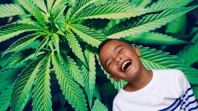 Study finds marijuana a miracle cure for autism