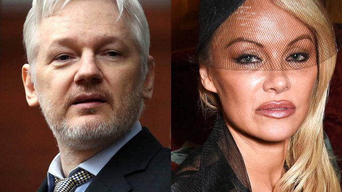 Pamela Anderson has urged WikiLeaks founder Julian Assange to seek refuge in Le Pen's France, before US authorities go after him.