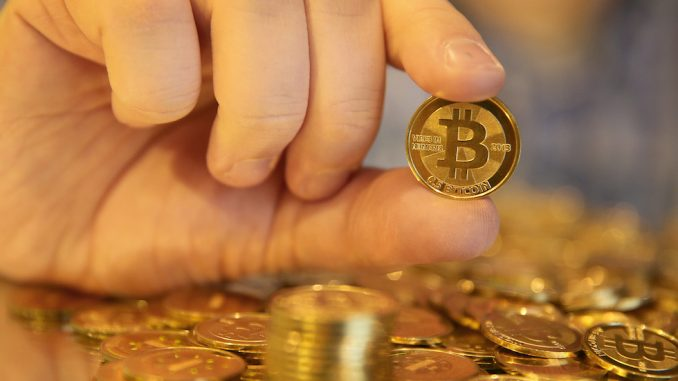 Bitcoin is a New World Order scam designed to con would be revolutionaries out of their money, according to a fraud expert.