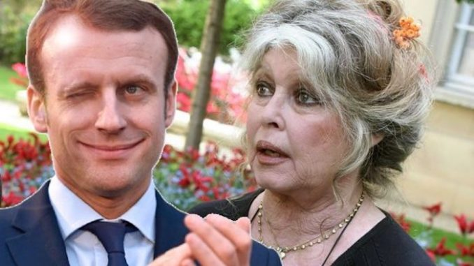 Brigitte Bardot has urged compatriots to vote for Marine Le Pen, describing Emmanuelle Macron as a cold eyed psychopath.