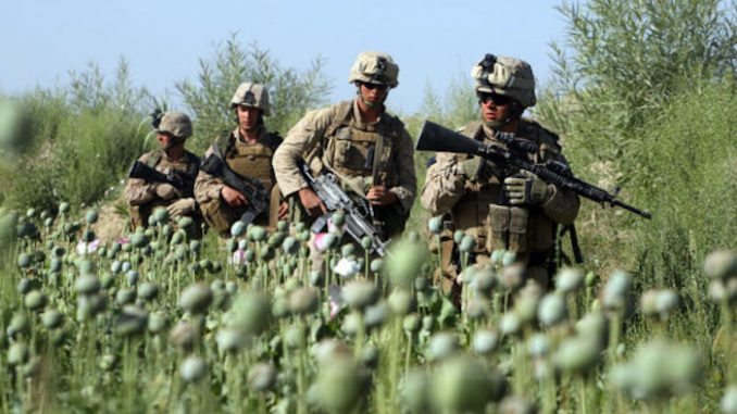 US Nato invasion of Afghanistan results in soaring opium production