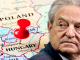 Austria labels George Soros enemy of the state