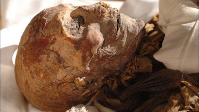 Ancient Egyptians visited the Americas as early as 1,000 BC and traded with locals for tobacco and cocaine, a new find suggests.