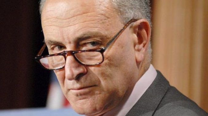 Chuck Schumer requests immediate shut down of voter fraud commission