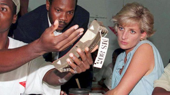 MI5 agents plotted to assassinate Princess Diana on an Angolan minefield just months before she died in Paris, claims an Angolan official.