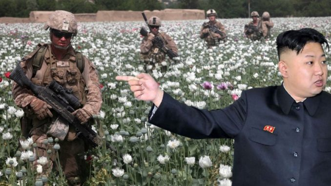 Kim Jong-un says the real reason for war in North Korea is to take control of the country's vast poppy fields