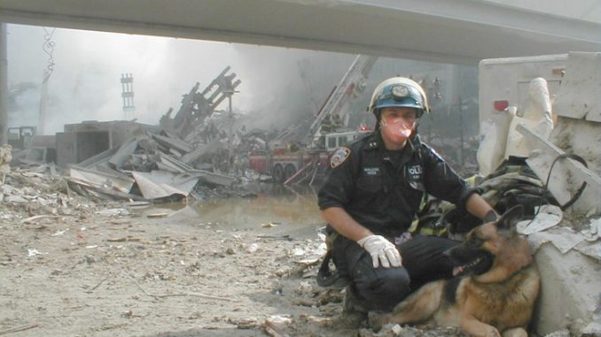 Security guard alleges that bomb sniffing dogs were removed from WTC complexes day before 911