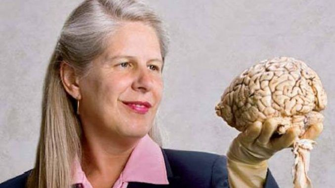 Harvard Scientist who had a stroke figures out the mystery of life