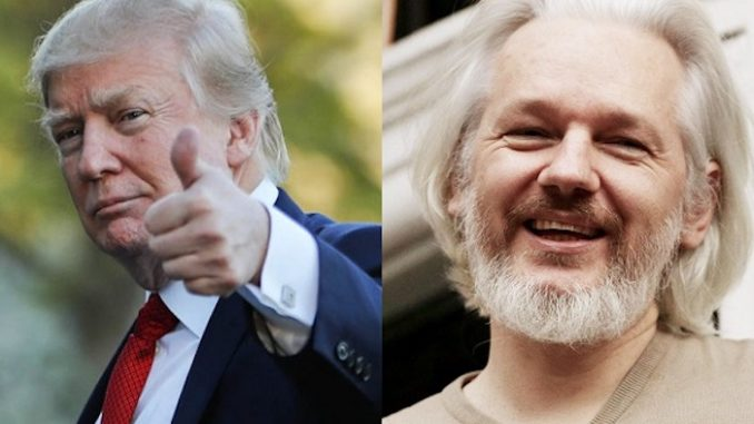 Trump considers pardoning Julian Assange