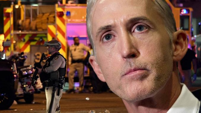 """Trey Gowdy has questioned the """"lone wolf"""" narrative being pushed by mainstream media, saying it is """"difficult to believe."""""""