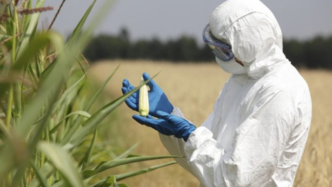 Monsanto quietly renames GMO ingredients on food labels