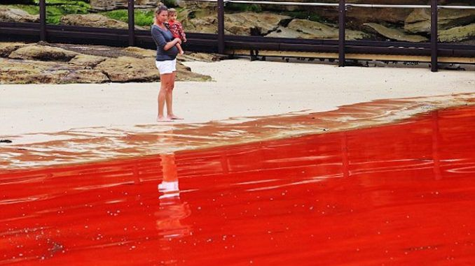 Reports of rivers turning red all over the world have shocked Biblical scholars who say it is a sign we have reached the end times.