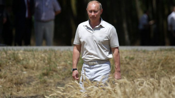 Putin promises to feed half the world with non-GMO organic food grown in Russia