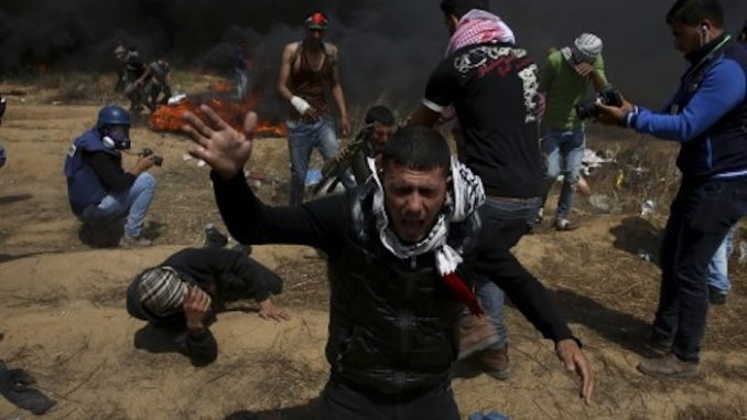 Israeli officials murder further 4 Palestinians at Gaza border