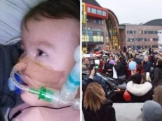 British citizens threatened with arrest if they speak out against baby Alfie's murder
