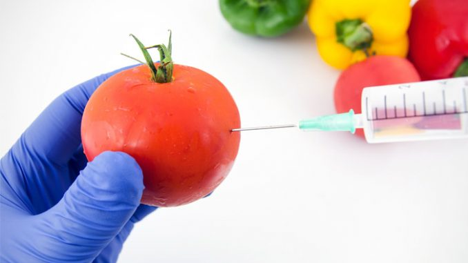 Study confirms GMO DNA is absorbed by humans