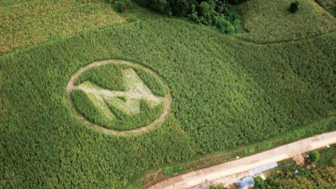Monsanto is killing our children, not feeding the world