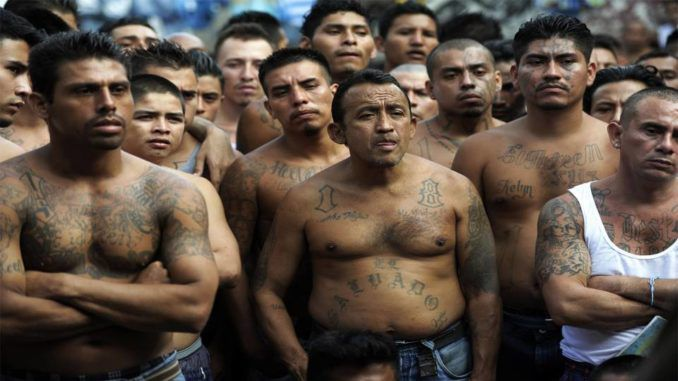 MS-13 gang members join migrant caravan headed towards U.S.A