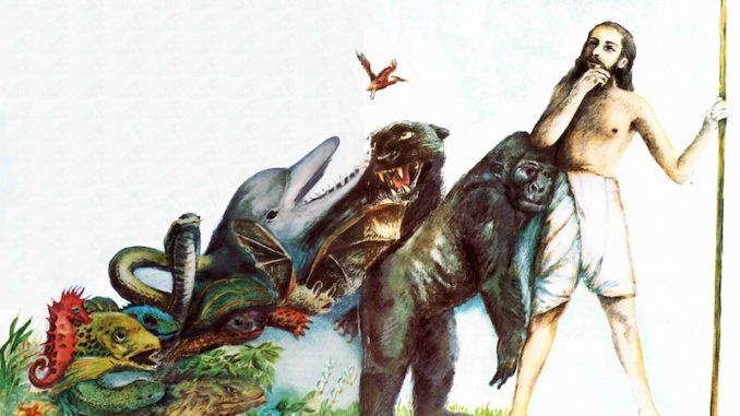 Hundreds of the world's leading scientists have jointly declared Darwin's theory of evolution to be outdated and unscientific.