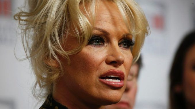 Baywatch star Pamela Anderson has published an open letter to the Australian prime minister, slamming him for not supporting Julian Assange.