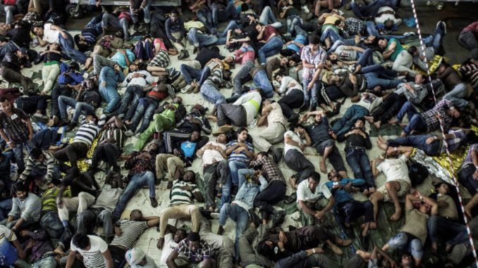 New global UN pact will flood Europe with extra 59 million migrants by 2025, MEP warns