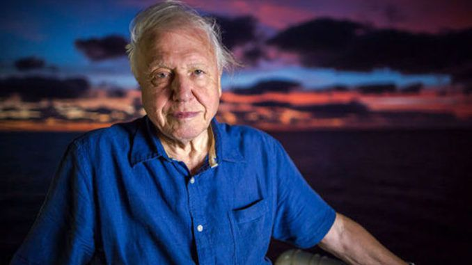 David Attenborough warns mankind is on the brink of collapse