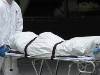8 members of pedophile ring found dead after being exposed by online vigilantes