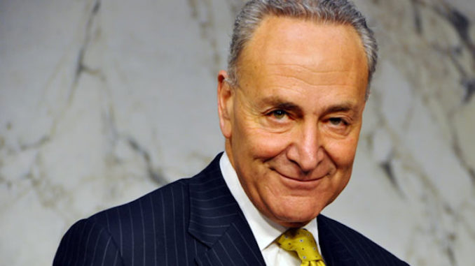 Chuck Schumer urged deep state to stage intervention to bring down Trump