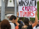 French court bans Monsanto's weedkiller because it causes cancer