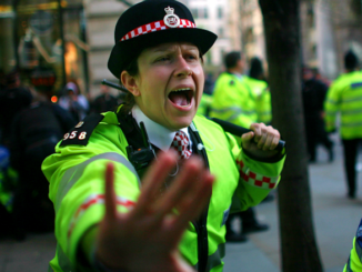British police arrest mother at her home after she uses wrong pronoun on Twitter