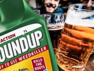 "A new study reveals popular beer and wine brands in the U.S. are ""loaded"" with the toxic chemical glyphosphate from Monsanto's RoundUp."