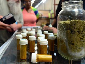 Medical marijuana users begin ditching Big Pharma drugs