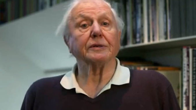 Sir David Attenborough says sending foot to famine-ridden country is 'barmy' in depopulation rant