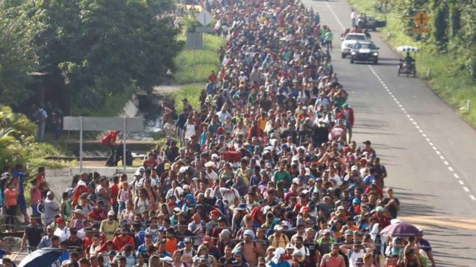More than one million illegal aliens are expected to settle in the US in 2019, according to Immigration and Customs Enforcement officials