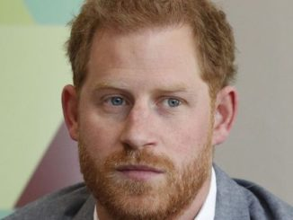 "Prince Harry has called on regulators to ban the popular battle royale game ""Fortnite"" because it is ""mind-altering"" and addictive."