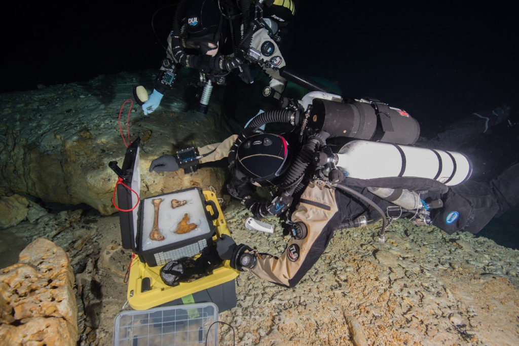 Ancient Animal & Human Bones Discovered In Underwater Graveyard In Mexico Ancient-bones-1-1024x683