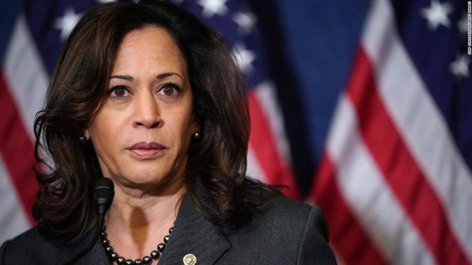 Kamala Harris promises to criminalize private gun sales via executive order