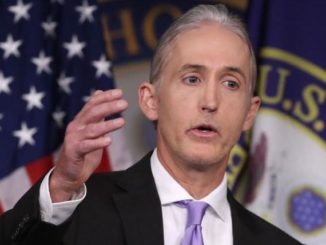 Trey Gowdy says FBI withheld game-changer intelligence in Russia probe