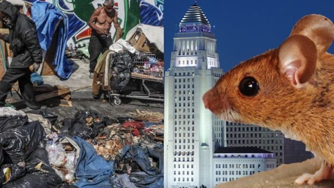 "Los Angeles City Hall is ""infested with rats"" according to an uncovered report that connects the plague of rodents to the enormous homeless population in the liberal city."